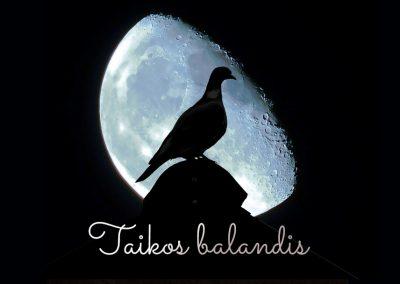 16 Mėnulio kalendoriaus para