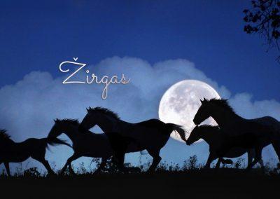 21 Mėnulio kalendoriaus para